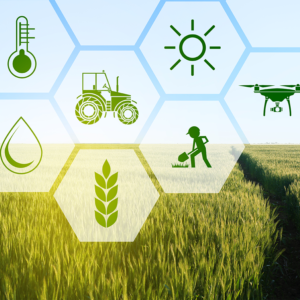 Environmental and Agricultural Analytics